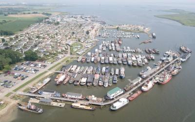 Port Werburgh-0036